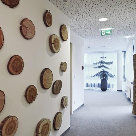Sonnberghof – Bad Sauerbrunn – Burgenland